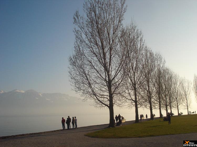 Hike in Lavaux (Switzerland) / Trilha em Lavaux (Suíça)