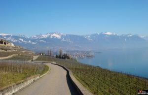 Lavaux (Switzerland) / Lavaux (Suíça)