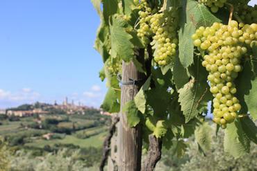 SanGimignano1_Foto01