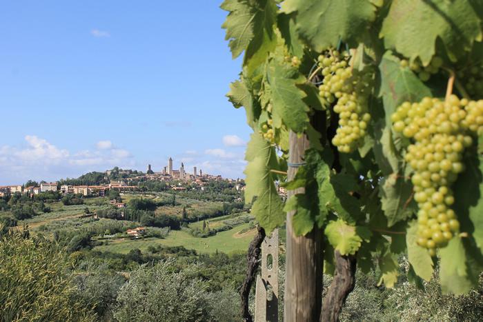 Viagem para Toscana: diversão,cultura, arte e belas paisagens