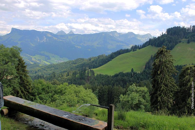 Vista da montanha com um rego d'água