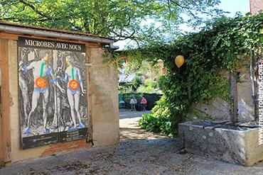 No jardim algumas das descobertas de Pasteur...