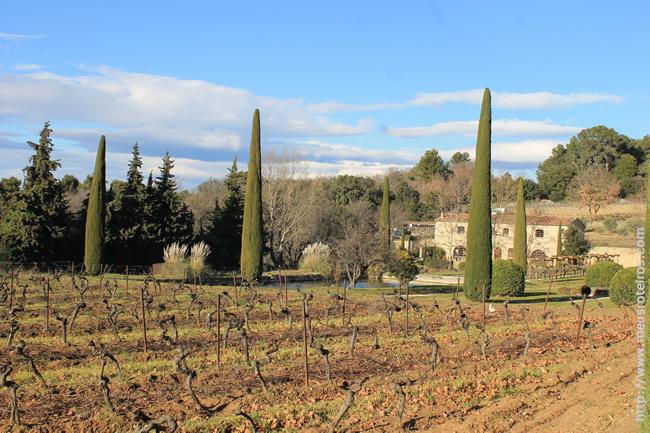 Luberon_Provence_Foto10