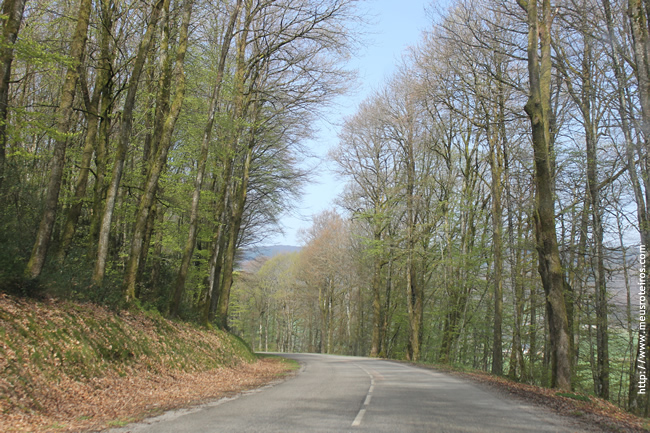 Parque Morvan, Bourgogne, França