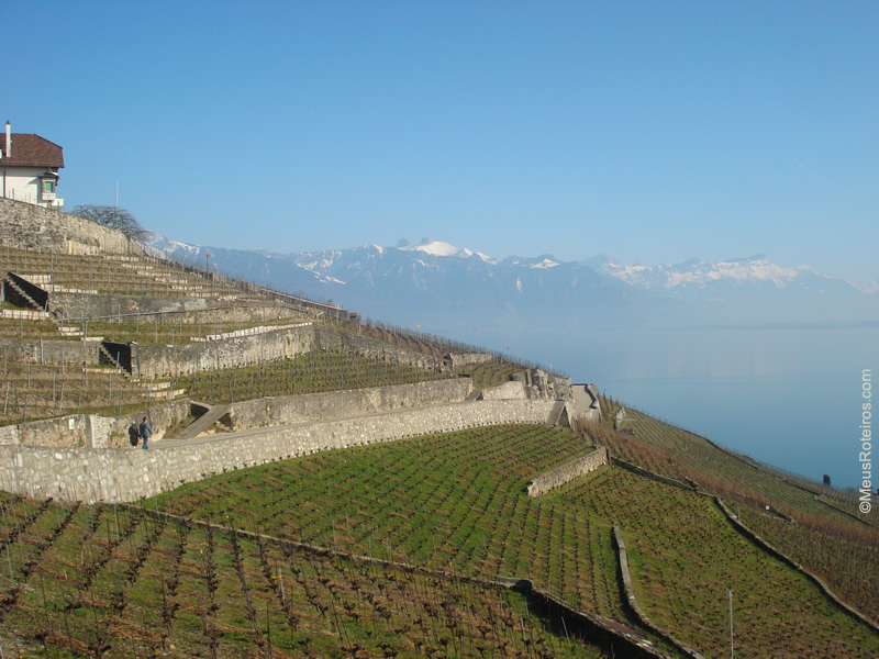 Lavaux - Suíça / Switzerland