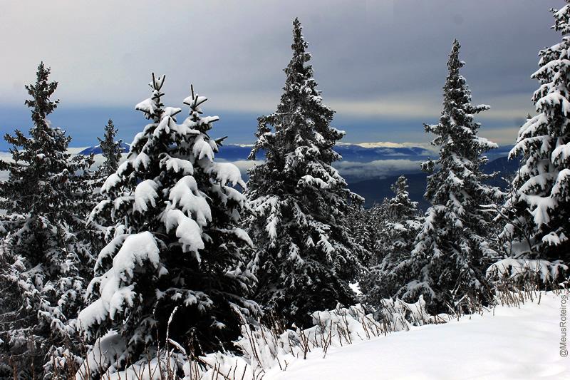 Paísagem de neve (Plateau Le Semnoz / Haute Savoie / França)