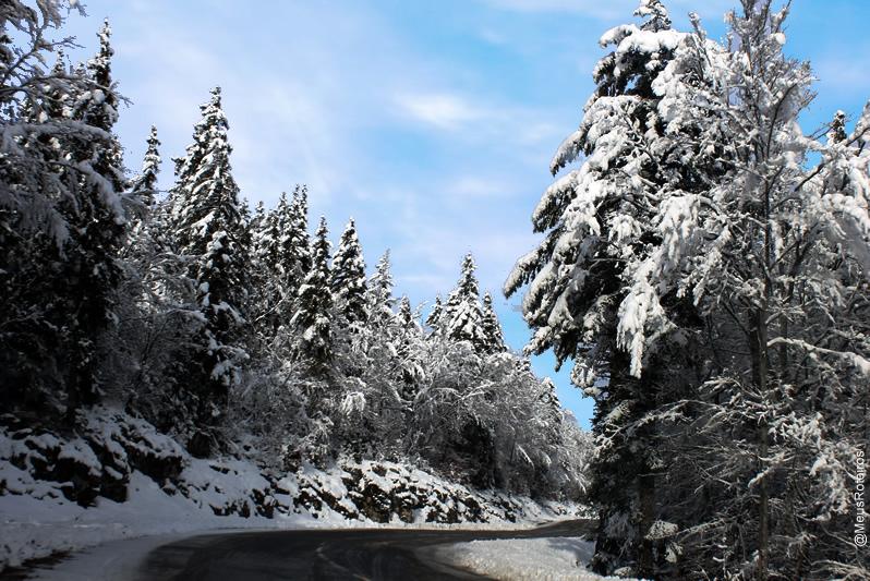 Estrada com neve (Plateau Le Semnoz / Haute Savoie / França)