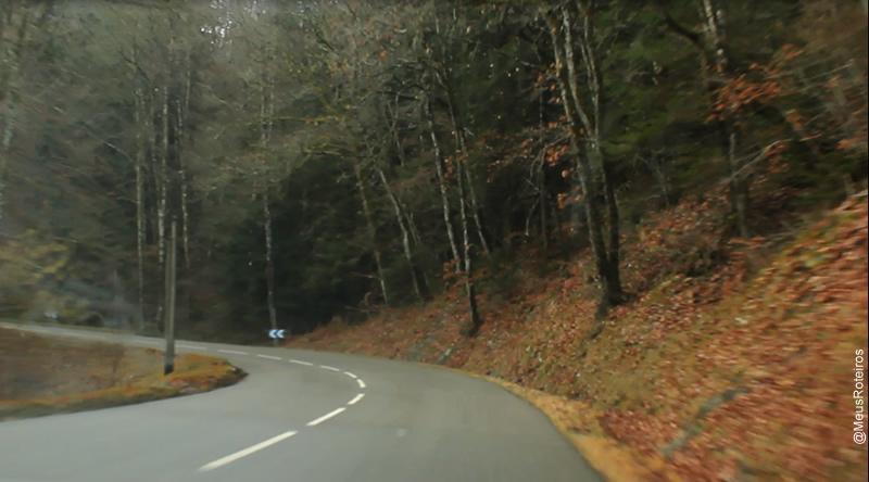 Estrada com folhas amareladas (Plateau Le Semnoz / Haute Savoie / França)