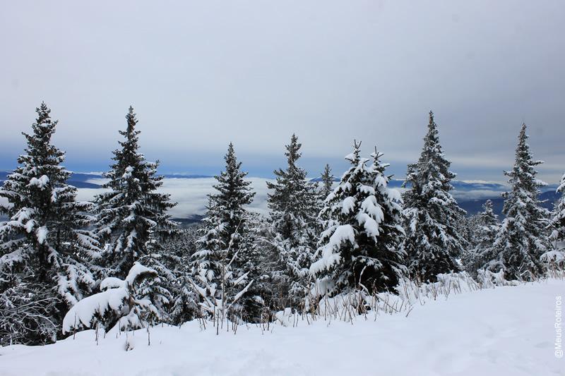 Vista do Plateau Le Semnoz / Haute Savoie / França