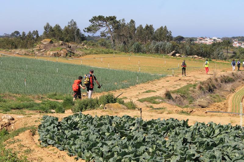 Trilha em Portugal: grupo no meio da plantação