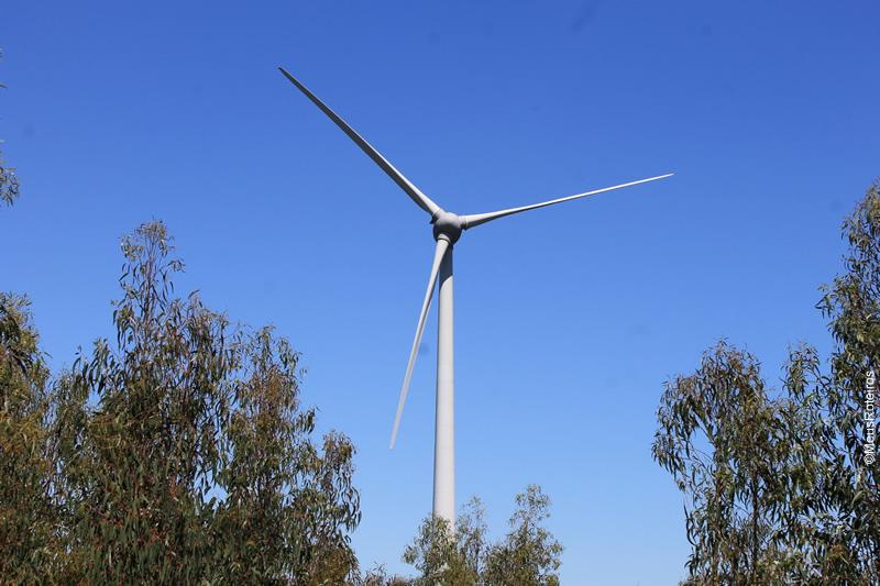 Trilha em Portugal: moinho de vento