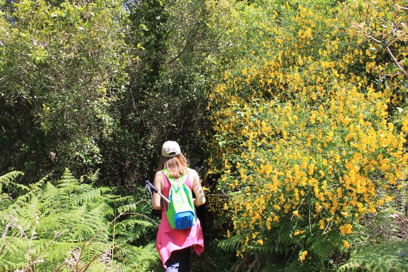 Trilha em Portugal: integrante do grupo caminhando