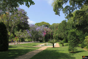 Jardins do Palácio de São Bento (Lisboa) / Garden of São Bento Palace (Lisbon)