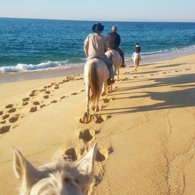 Melidas Portugal English below Domingo fomos cavalgar em uma dashellip